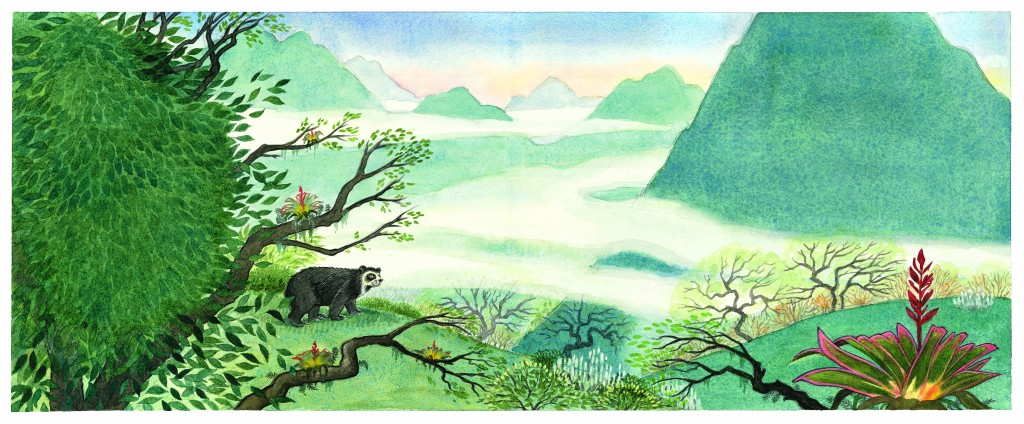 Spread from WILD ABOUT BEARS, Illustration © Jeannie Brett